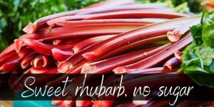 How To Sweeten Rhubarb Without Sugar – 6 Ideas To Try