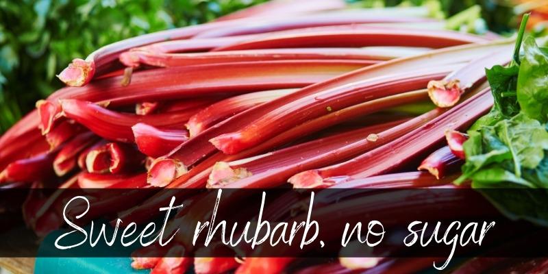 rhubarb no sugar