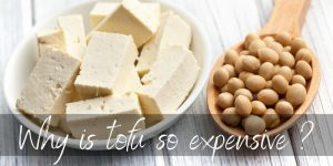 Read more about the article Why Is Tofu So Expensive ? Here's What's Really Happening