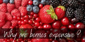 Read more about the article Why Are Berries So Expensive ? – 4 Reasons They're Worth It