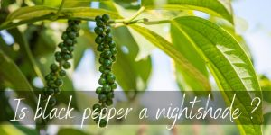 Read more about the article Is Black Pepper A Nightshade ? No, And Here's Why