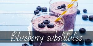 Blueberry Substitute – 10+ Ideas To Make Your Morning Great