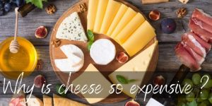Why Is Cheese So Expensive ? 6 Hard Reasons