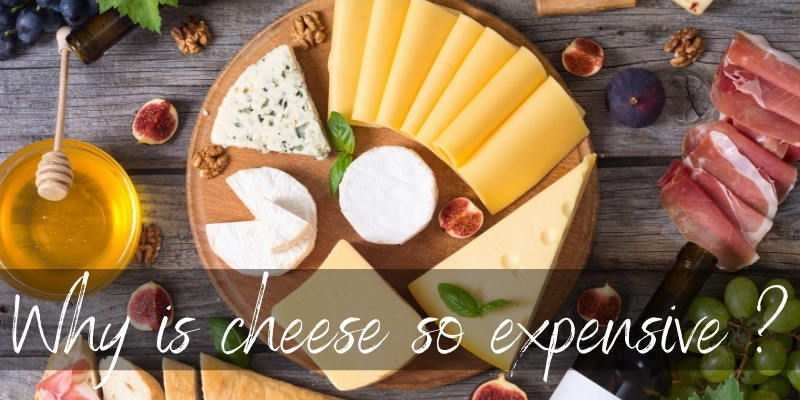 Read more about the article Why Is Cheese So Expensive ? 6 Hard Reasons
