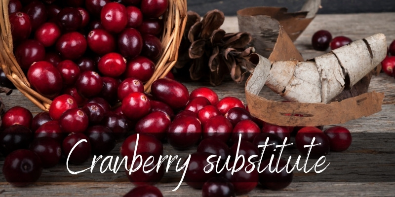 Read more about the article Cranberry Substitute – 7 Tart Ideas To Save The Sauce