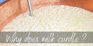 Read more about the article Why Does Milk Curdle ? Here's What We Found Out