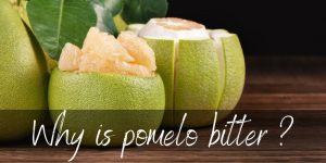 Read more about the article Why Is Pomelo Bitter ? Here's Why, And What To Do About It