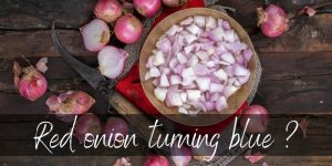 Read more about the article Why Do Onions Turn Blue ? Break Out Your Chemistry Set