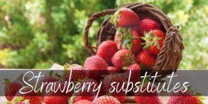 Strawberry Substitute – 6 Tasty & Fruity Ideas