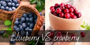 Cranberry VS Blueberry – Main Differences And How To Use Them
