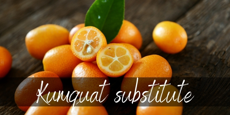 Read more about the article Kumquat Substitute – 5 Ideas To Try Next