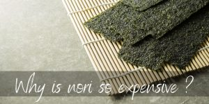 Why Is Nori So Expensive ? 4 Reasons & Substitute Ideas