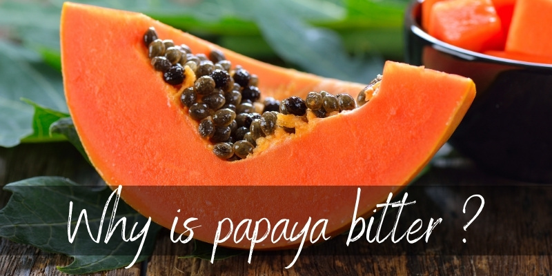Read more about the article Why Is Papaya Bitter ? Here's What We Know