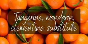 Read more about the article Tangerine, Mandarin, And Clementine Substitute – 4 Ideas To Try