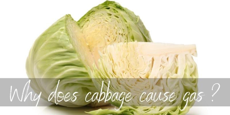 cabbage gas