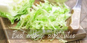 Best Cabbage Substitute – 9 Crunchy, Fresh Ideas