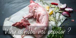 Read more about the article Why Is Rabbit Meat Not Popular ? 3 Quick Reasons