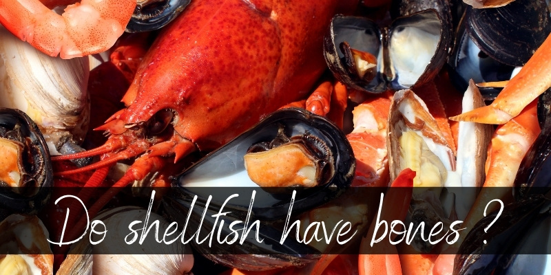 Read more about the article Do Shellfish Have Bones ? Meet Your Next Favorite Seafood
