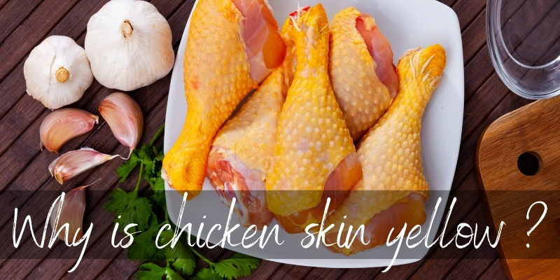 Why Is Chicken Skin Yellow ? Two Reasons Not To Panic