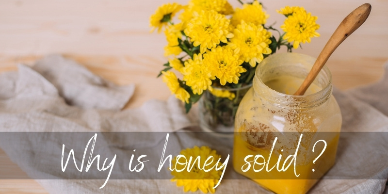 Why Is My Honey Solid ? 4 Reasons & How To Store It