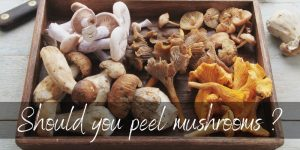 Read more about the article Should You Peel Mushrooms ? And Other Mushroom FAQs