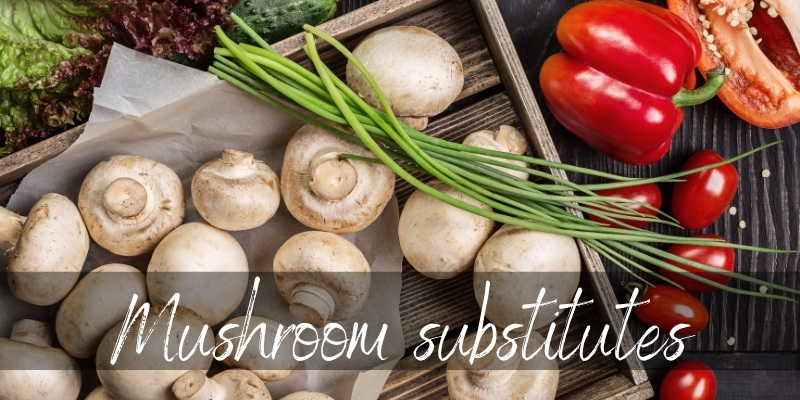 Read more about the article Mushroom Substitutes – Fresh New Ideas To Try Out