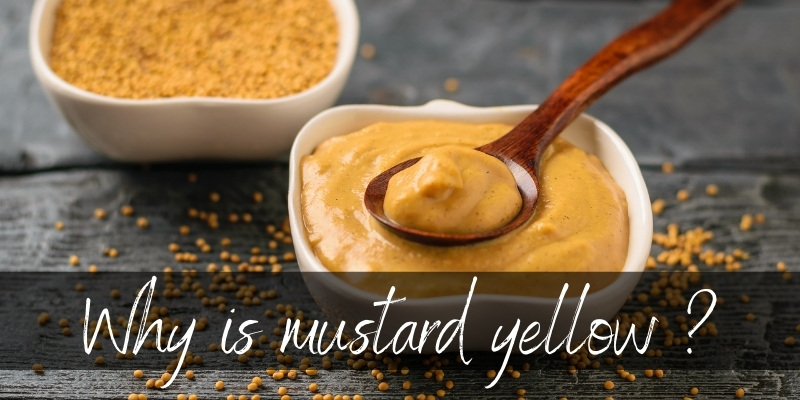 Why Is Mustard Yellow ? Here's The Real Thing