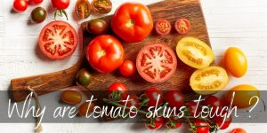 Read more about the article Why Are Tomato Skins Tough ? They Could Be Useful