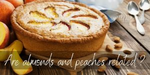 Read more about the article Are Almonds And Peaches Related ? Yes, And Here's How