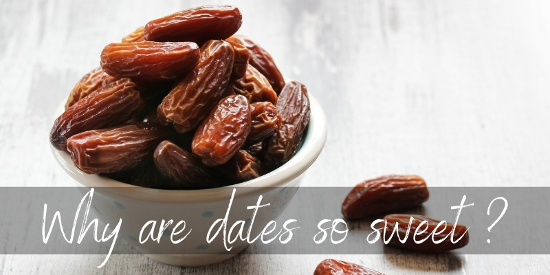Why Are Dates So Sweet ? Here's What's In Them