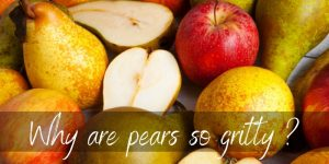 Read more about the article Why Are Pears Gritty ? Here's What's Going On