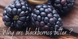 Read more about the article Why Are Blackberries Bitter ? Here's How To Fix Them