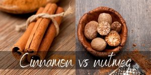 Read more about the article Cinnamon VS Nutmeg – What They Are & How They Differ