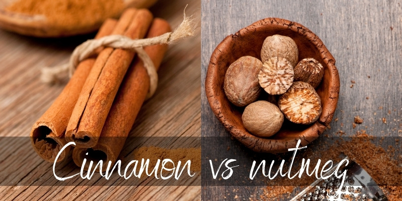 Cinnamon VS Nutmeg – What They Are & How They Differ