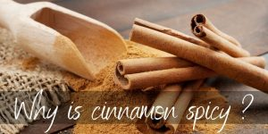 Why Is Cinnamon Spicy ? Here's What's Really In It