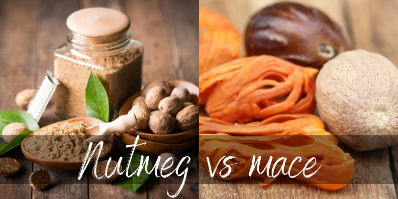 Read more about the article Nutmeg VS Mace – 3 Differences & How They're Used