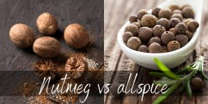 Read more about the article Nutmeg VS Allspice – Their Main Differences Explained