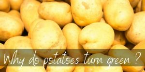 Read more about the article Why Do Potatoes Turn Green ? Here's What's Happening