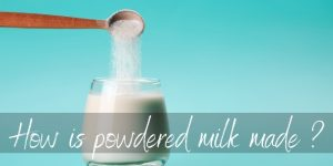 Read more about the article How Is Powdered Milk Made ? Here's What Happens