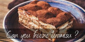 Can You Freeze Tiramisu ? Here's What To Know Before Trying