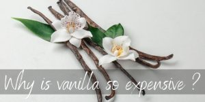Why Is Vanilla So Expensive ? 3 Reasons It's Worth The Extra Penny