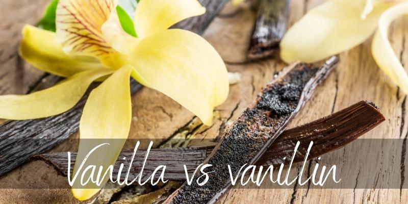 Vanilla VS Vanillin – Do They Really Differ ?