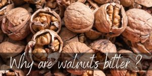 Read more about the article Why Are Walnuts Bitter ? Here's Why & How To Fix Them