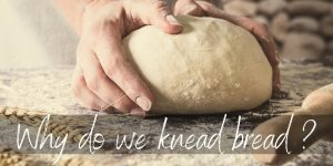 Read more about the article Why Is Bread Dough Kneaded ? It's A Crucial Step