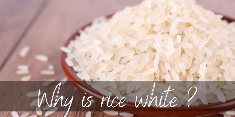 Read more about the article Why Is Rice White ? Here's How It Really Gets Its Color