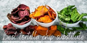 Read more about the article Tortilla Chips Substitute – 10 Crispy & Crunchy Ideas